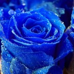 Farvesymbolik blå